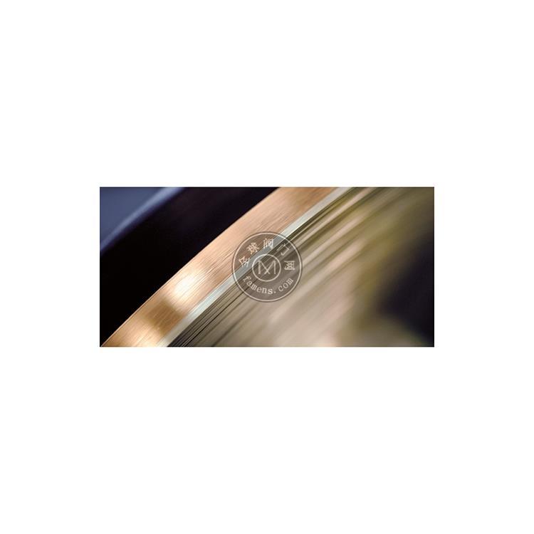 赫尔纳-供应德国G.RAU贵金属微型管