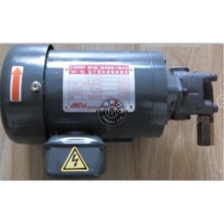 志觀TSWUKANA電機油泵2HP-TK-3020