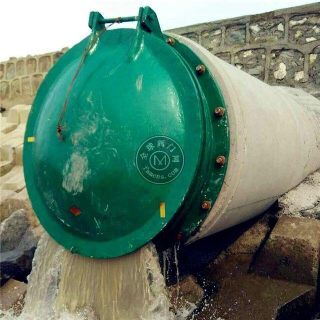 江西DN600玻璃鋼拍門供應