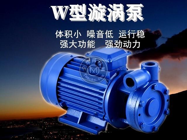 W型高扬程单级悬臂式漩涡泵增压泵高压泵锅炉给水补水泵三相380V