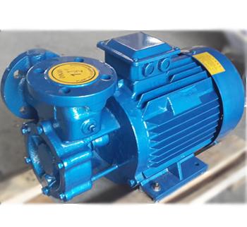 寧德廠家供應旋渦泵 直聯自吸渦流泵
