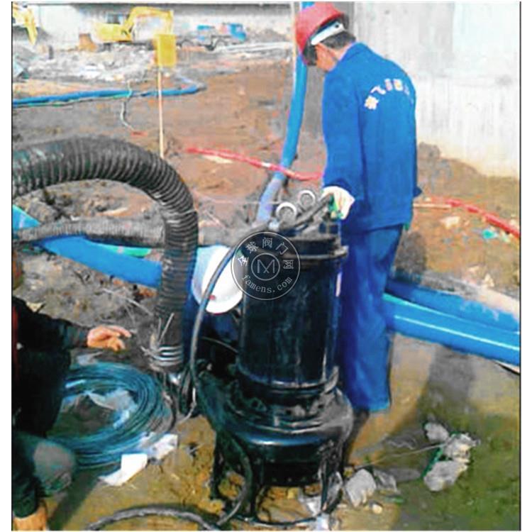 防汛搶險泵廠家直銷 事故搶險搶修移動泵價格